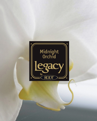 midnight-orchid-candle.jpg