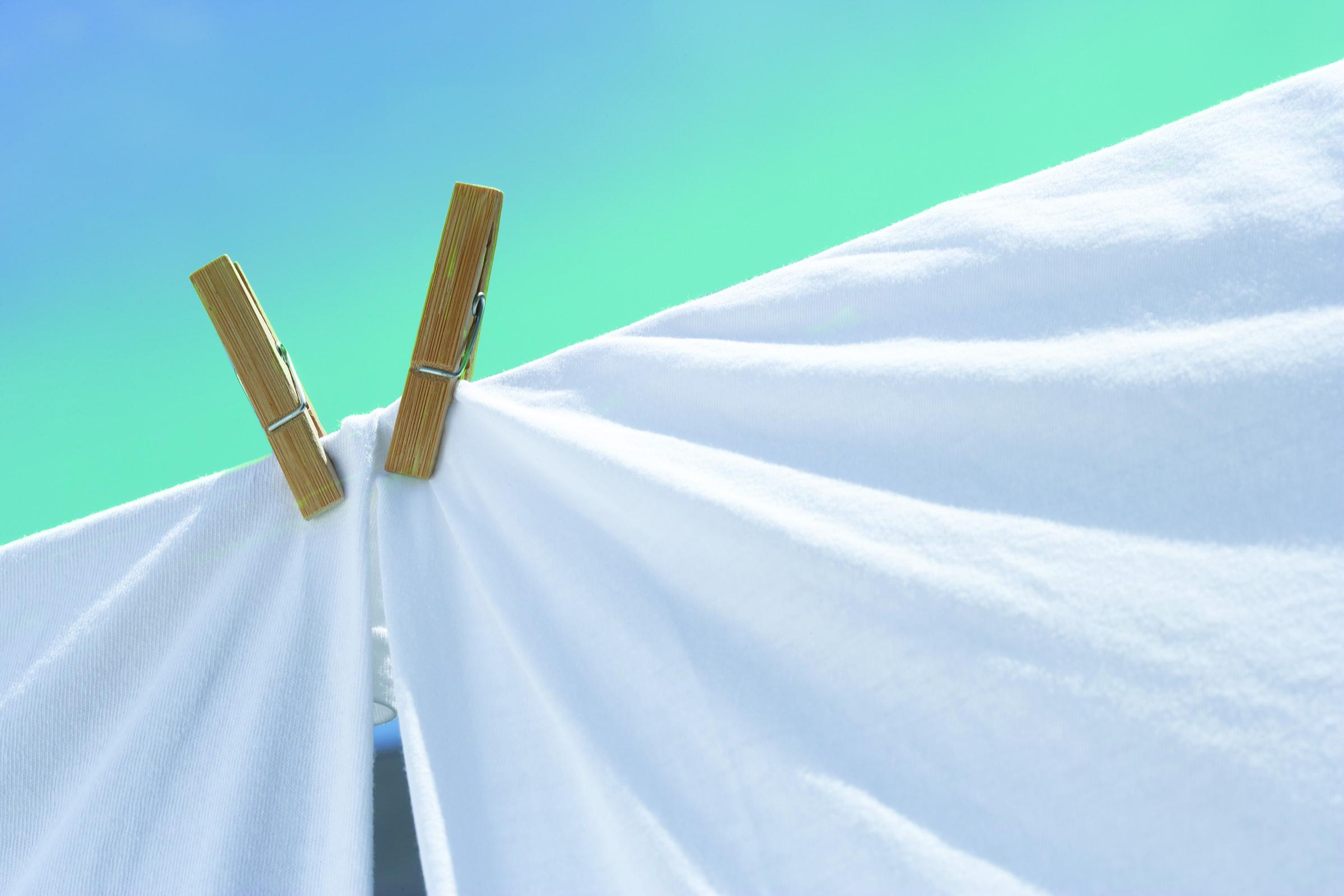 sun-dried-cotton1.jpg
