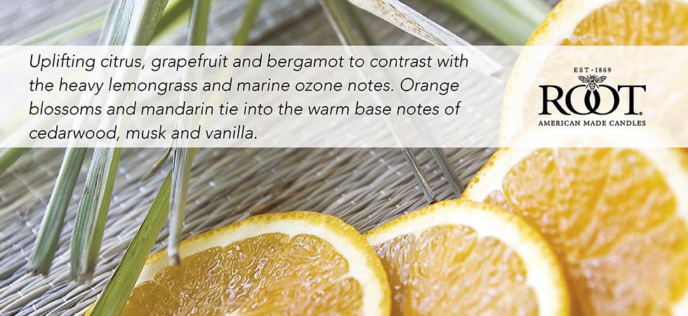 tangerine-lemongrass.jpg